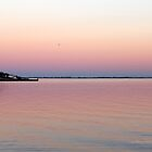 Evening View On Fire Island | Center Moriches, New York  by © Sophie W. Smith