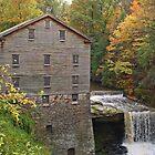 Seasons of Mill Creek Park by Monnie Ryan
