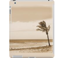 Shipwrecked - Aruba iPad Case/Skin
