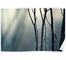 Moonlit Lattice Poster