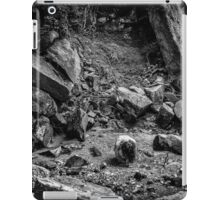 Intimations of Immortality iPad Case/Skin