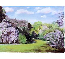 Fragrance of Spring Photographic Print