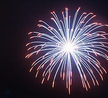 Fireworks by Eleisha