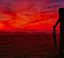 """""""Red Dawn at Shelford"""" by Phil Thomson IPA"""