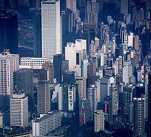 View of Hong Kong by Roz McQuillan
