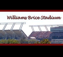 Williams Brice Stadium by Bjana Hoey