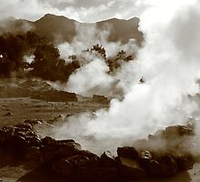 Furnas hotsprings, Azores by Gaspar Avila