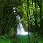 Salto do Prego waterfall by Gaspar Avila