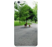 Lonesome Country Road iPhone Case/Skin