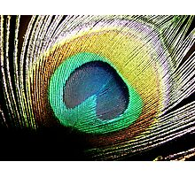 Feather heart Photographic Print