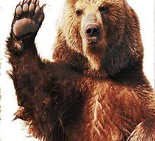 bear.bro by ALLYOU