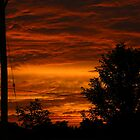 Fire in the Sky by Robert Goulet