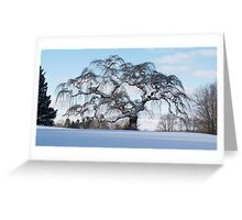 Scraggly Tree - Winter Greeting Card