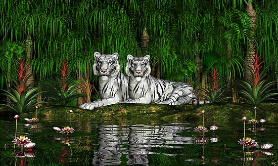 Pair of White Tigers by Walter Colvin