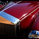 On a Rolls. by Chris Coetzee