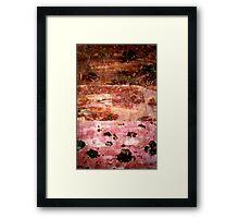 Drought Framed Print