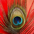 peacock feather by venny