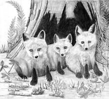 Fox Kits - Charcoal by Gordon Pegler