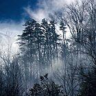 Beautiful Smoke 1 by Karen Stevens
