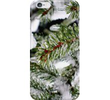 spruce under ice iPhone Case/Skin