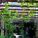 A Pretty Entrance,,,,,,,,, by lynn carter