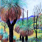 Grass Trees Canungra by Virginia McGowan