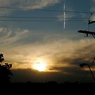Wired Sunset by Alexander Greenwood
