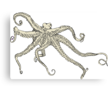 Vector illustration of hand drawn with octopus Canvas Print