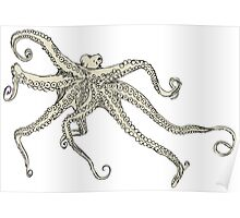 Vector illustration of hand drawn with octopus Poster