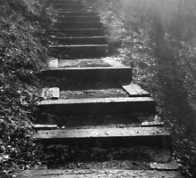 Wooded Stairway by nativeminnow