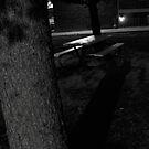 shadows by David owens