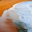 A Walk On The Wild Side - Sydney Beaches - The HDR Experience by Philip Johnson