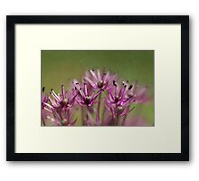 Spread Out  - JUSTART ©  Framed Print