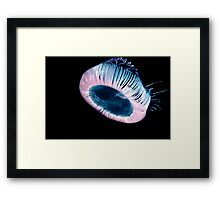 The Mothership Framed Print