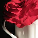 Love Is.... a Red Rose by AngieDavies