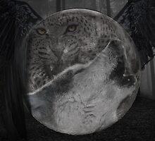 The predator's moon by jarro