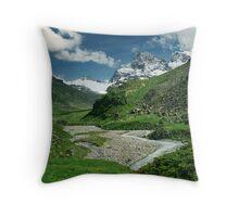 Early summer in Ochsental, Austria Throw Pillow