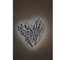Nature's Love Photographic Print