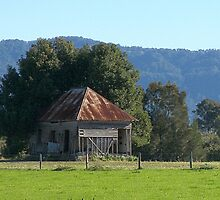 Old Chinamans Shack by Laura Moore