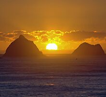 Sugar Loaf Sunset by Antony  Mark