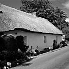 Thatched Cottage - Limerick, Ireland by pms32