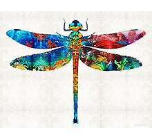 Colorful Dragonfly Art By Sharon Cummings Photographic Print
