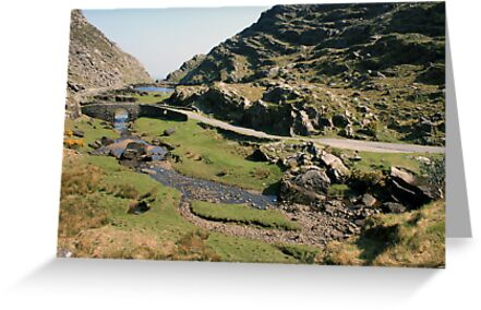 Gap of Dunloe by John Quinn