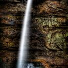 Dark Falls by Scott Ward