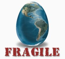 Earth-Fragile by Roch Herrick