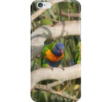 Cheeky Colourful Rainbow Lorikeets iPhone Case/Skin