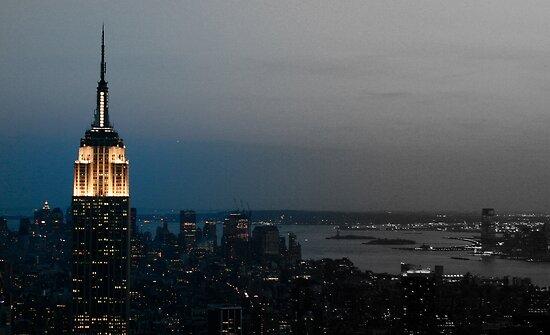 Gotham by Chelsea London Phillips