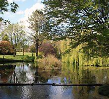 Japenese Gardens pond view by John Quinn