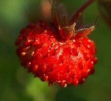 strawberry by juhamulperi