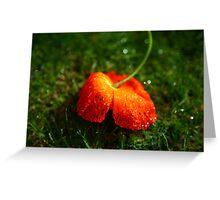 Water Droplet Petals Greeting Card